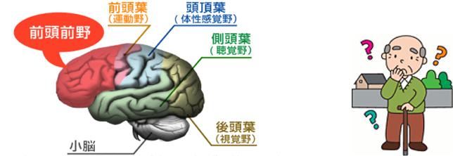 認知症予防総集編